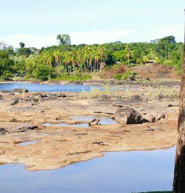 Studiereis Suriname 2017